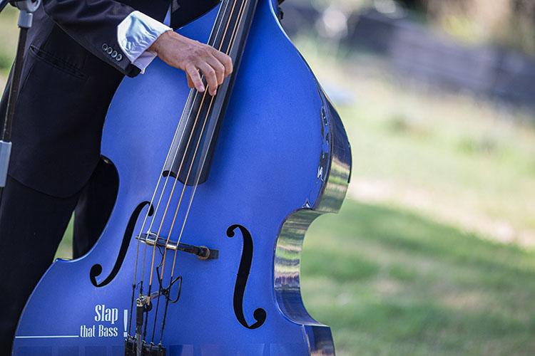 photographe musicien musique concert