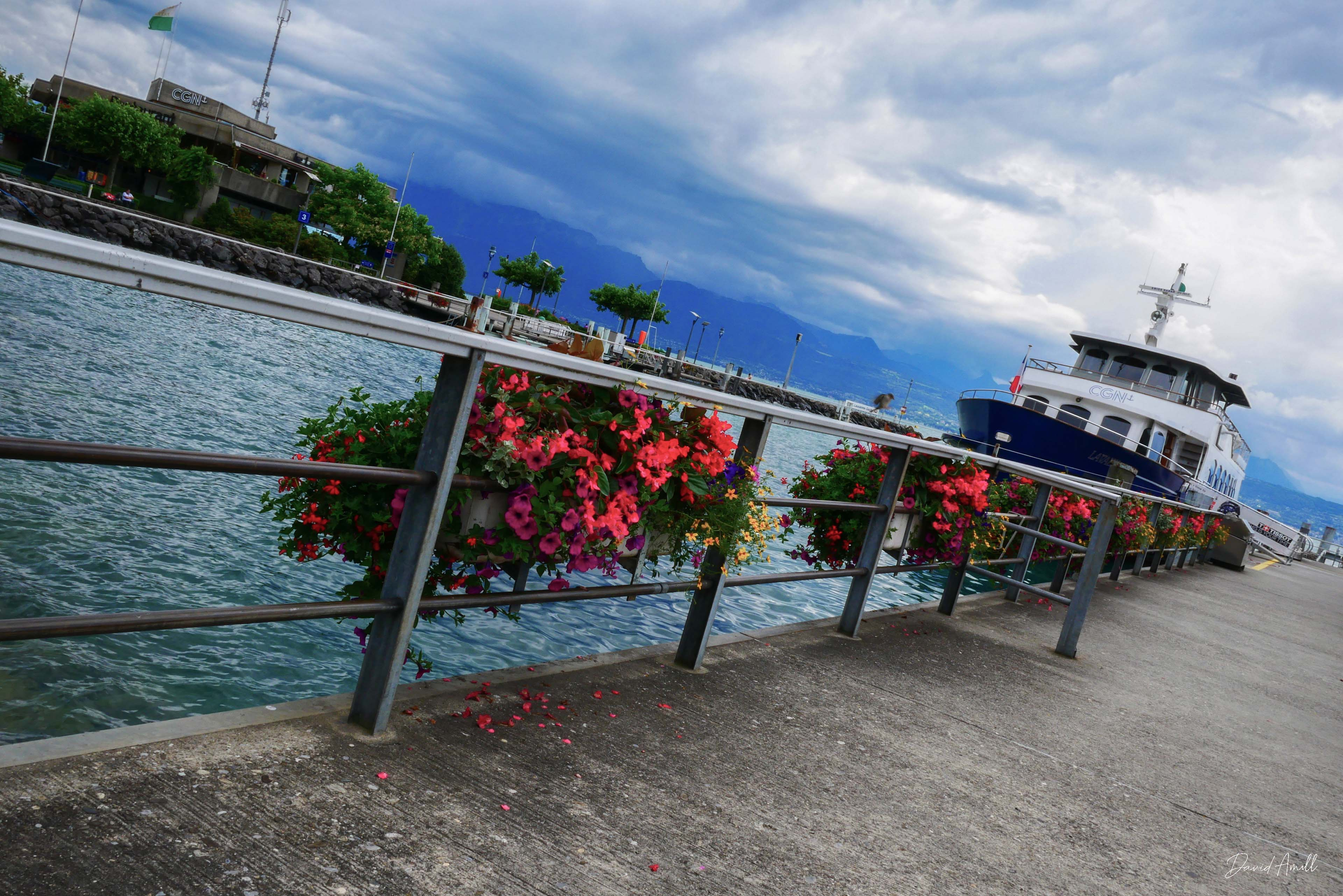 lausanne bateau lac leman fleur